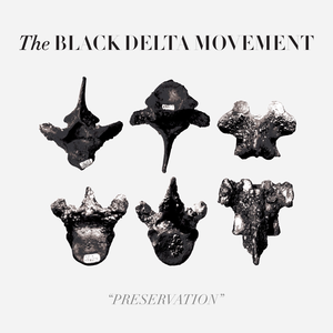 The Black Delta Movement