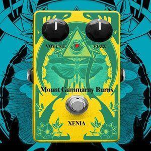 Mount Gammaray Burns