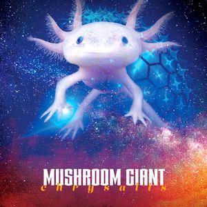 Mushroom Giant