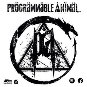 Programmable Animal