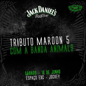 Banda Animals