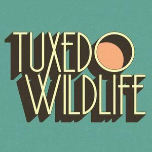 Tuxedo Wildlife