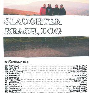 Slaughter Beach, Dog