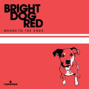Bright Dog Red