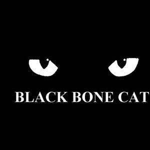 Black Bone Cat