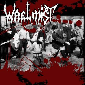 Waelmist