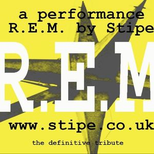 Stipe: REM Tribute Band