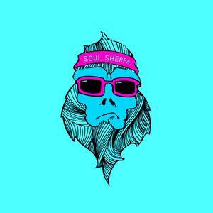 Soul Sherpa