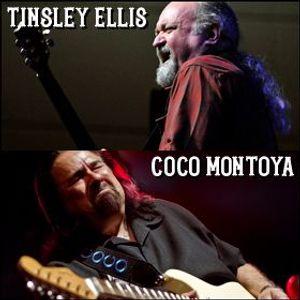 Tinsley Ellis