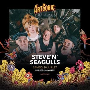 Steve'n'Seagulls