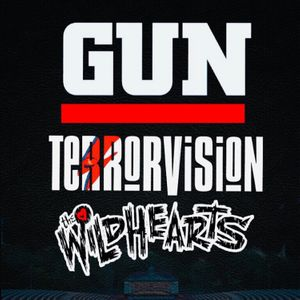 GUN - Official