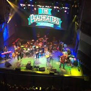 The Peacheaters An Allman Brothers Band Experience