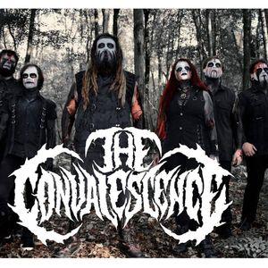 The Convalescence