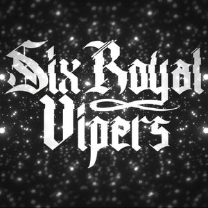 Six Royal Vipers
