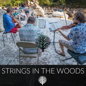 Strings in the Woods