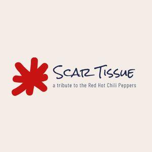 Scar Tissue [RHCP Tribute]